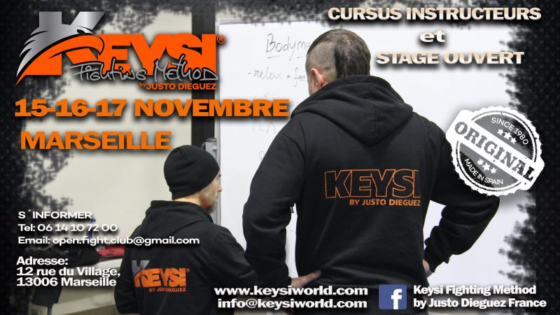 Instructor Development Program Course and Open Workshop, Marseilles - France, November 2019 @ Open Fight Club